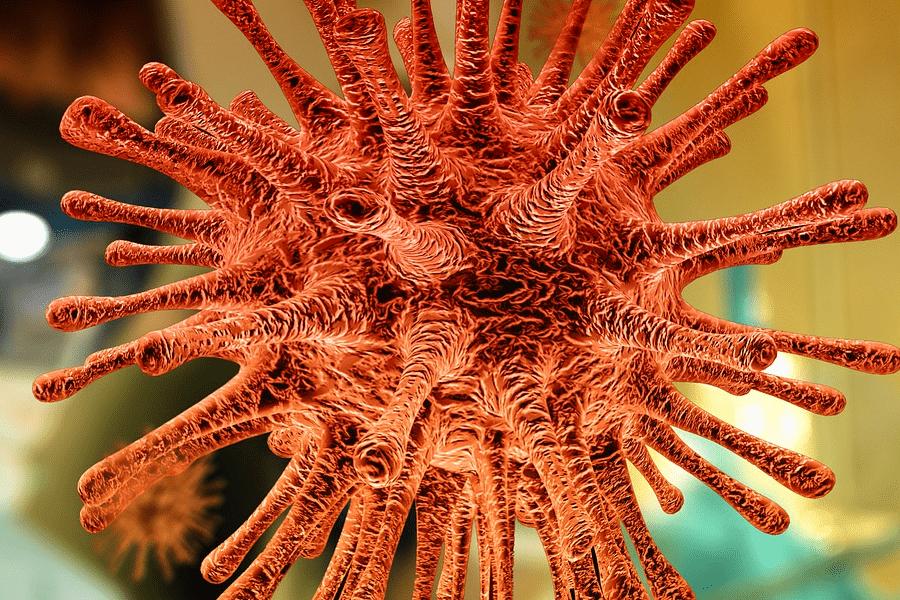 Immunsystem immunologischer Test