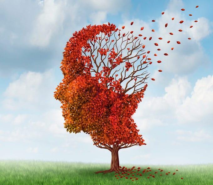 strategien-gegen-demenz