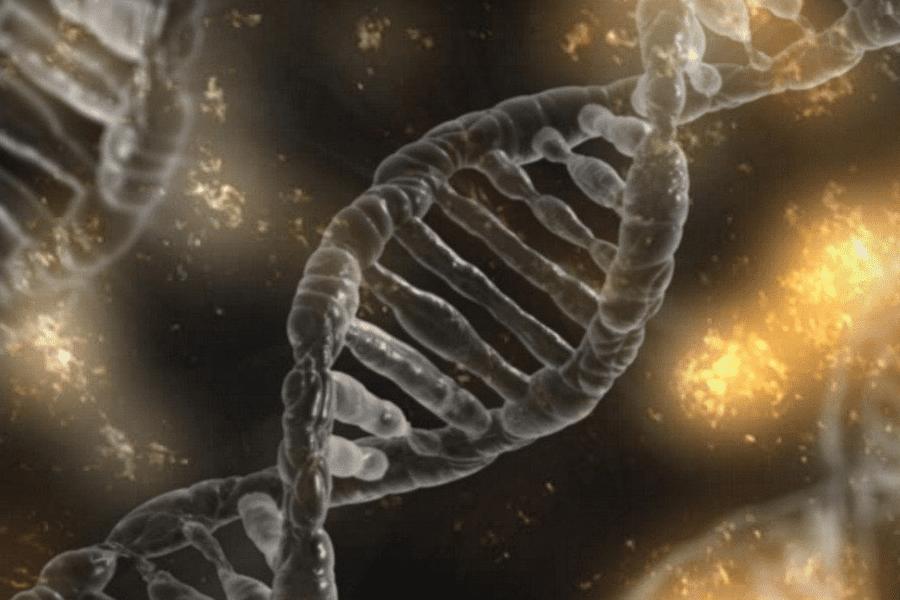 DNA-Analaysen-Vorsorge