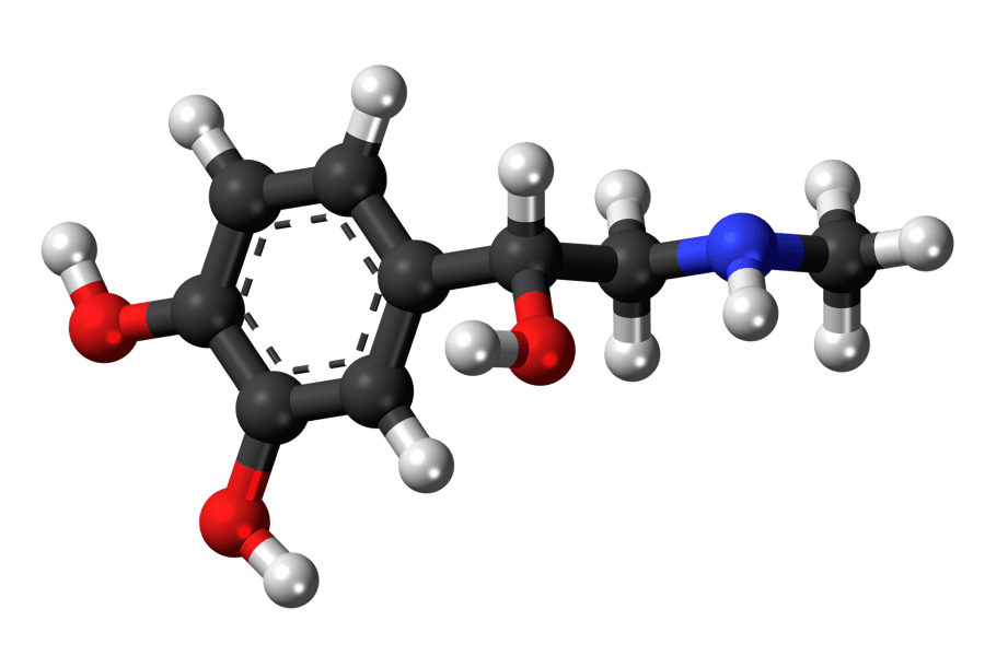 Hormone Moleküle